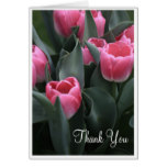 Pink Tulip Thank You Cards